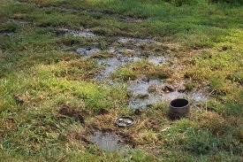 septic inspection in Lake Stevens