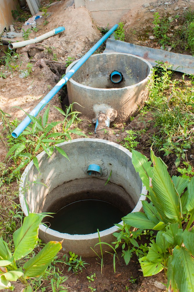 Are You Looking for Reliable Septic Service in Everett?